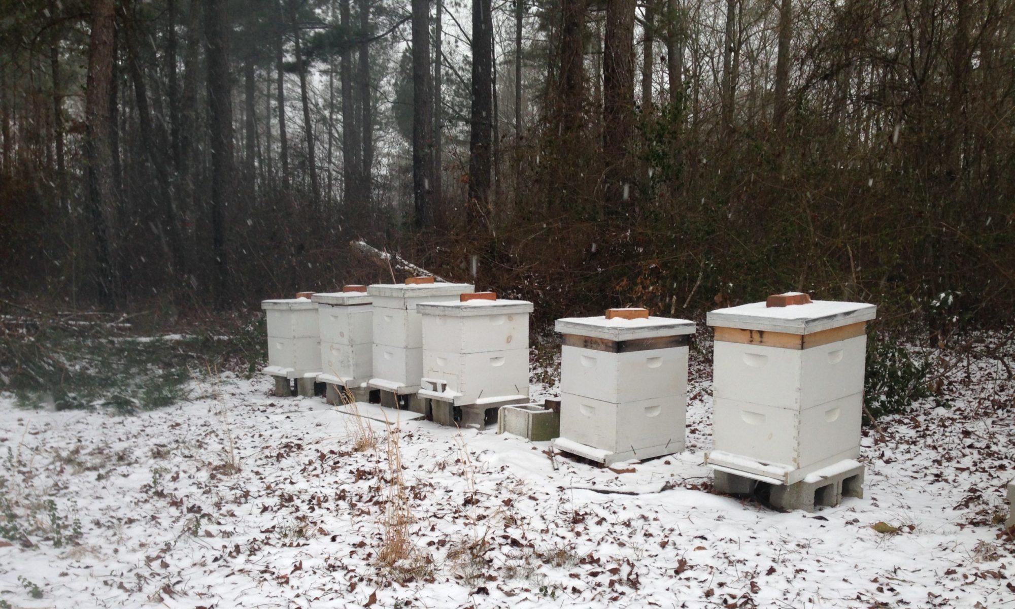 Scotland County Beekeepers Association